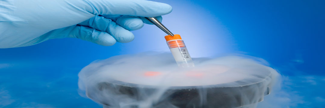 Direction and Trends in Cryopreservation