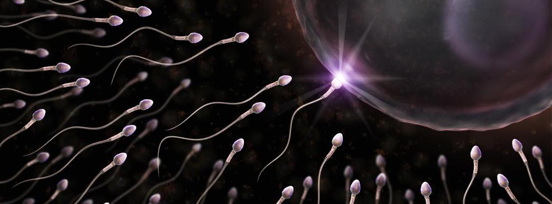 Are you having sperm or semen allergy ?