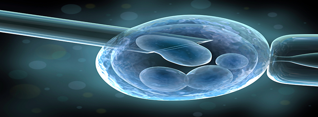 Is ICSI treatment a blessing for infertile couples?