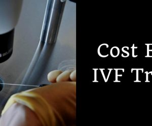 Cost Effective IVF Treatment in India? The Complete Treatment Procedure