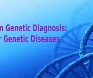 Preimplantation Genetic Diagnosis: Solution for Genetic Diseases